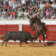 Spanish bullfighter on horseback Diego Ventura bullfighting on horseback — Stock Photo