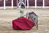 Spanish bullfighter Manuel Jesus El Cid with the cape bullfighting a bull of nearly 600 kg of grey ash during a bullfight held in Ubeda — 图库照片