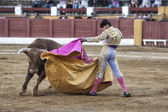 Spainish bullfighter David Valiente bullfighting with a crutch in a beautiful pass by low in the Bullring of Andujar — Stock Photo
