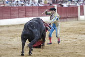 Bullfighter Julian Lopez El Juli stabbing the bull with the swor — Stock Photo