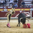 Spanish bullfighter Cesar Jimenez, the bull takes the crutch fro — Stock Photo