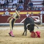 Spanish bullfighter Cesar Jimenez, the bull takes the crutch fro — Stock Photo #38653975