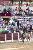 Spanish bullfighters Fermin Bohorquez asks the president of the — Foto de Stock