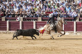 Spanish bullfighter Fermin Bohorquez bullfighting with a flag of — ストック写真