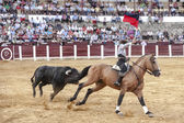 Spanish bullfighter Fermin Bohorquez bullfighting with a flag of — 图库照片