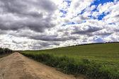 Landscape with green grass, road and clouds — Stock Photo