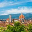 Cathedral Santa Maria del Fior, Duomo, with defocused green plantsin front and beautiful sky in Florence, Tuscany, Italy — Stock Photo #40972947