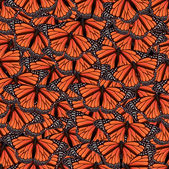 Seamless background with butterfly — Vector de stock