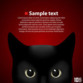 Portrait schöne Katze — Stockvektor