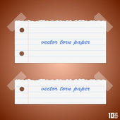 Torn paper vector — Stock Vector