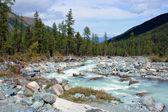 Mountain Altai. The river Akkem. — Stock Photo