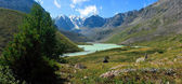 Altaj. jezero karakabakskoe. — Stock fotografie