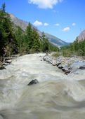 Mountain Altai. Russia. The river Maashej. — Stock Photo