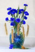 Cornflowers and rye. — Stock Photo