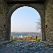 View on NebojsTowe through entrance on Kalemegdfortrees — Stock Photo #34642141