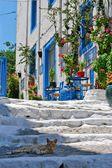Beautiful street in Kos town — Stock Photo