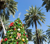 Christmas tree in Miami — Stok fotoğraf
