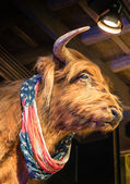 Buffalo with american flag — Stock Photo