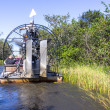 Stock Photo: Airboat and Everglades