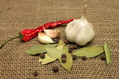 Garlic and pepper — Stock Photo