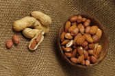 Range of different nuts — Stock Photo