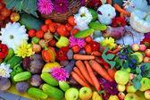 Een bos van verschillende groenten — Stockfoto