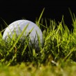 Stock Photo: Golfball