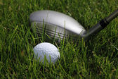 Hybrid and ball in rough — Stock Photo