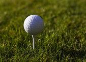 Golfball on Tee — Stock Photo