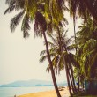 Vietnam beach — Stock Photo