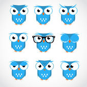 Cute Vector Collection of Bright Owls. Flat style — Stock Vector