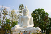 White Image Buddha Statue — Stock Photo