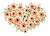 Na białym tle valentine kwiaty — Zdjęcie stockowe