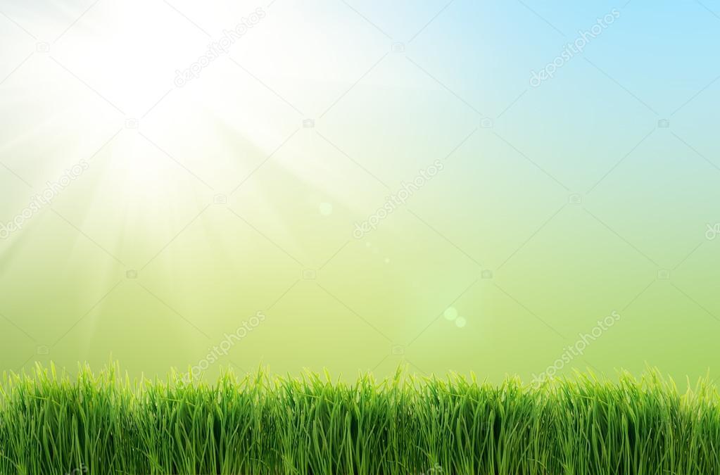 Sfondo natura verde erba foto stock ver0nicka 42288923 for Immagini sfondo natura
