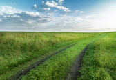 Road through fields with green grass and blue sky with clouds, n — Stock Photo