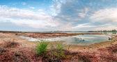 Tedavi edici çamurlar, doğal yaz peyzaj imalatı — Stok fotoğraf
