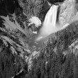 Yellowstone Lower Falls — Stock Photo