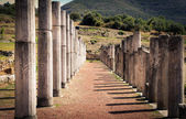 Ruins in ancient city of Messina, Peloponnes, Greece — Stock Photo