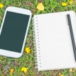 Cream notebook with pen and mobile phone on green grass — Stock Photo #43233397