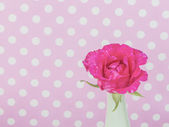 Rose in green vase with pink polka dot background — Stock Photo