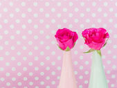 Roses in green and pink vase  — Stock Photo