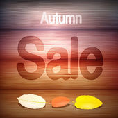 Autumn Sale title on wooden background — Stock Vector