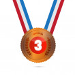 Stock Vector: Third Place, Bronze Medal