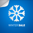 Winter Sale Title — Stock Vector