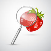 Magnifying Glass an Strawberry — Stock Vector