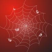 White Cobweb With Rain Drops — Stock Vector
