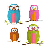 Owls Vector Illustration Set Isolated on White Background — Stock Vector