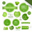 Natural Product Green Labels - Tags - Stickers Set — Stock Vector #41558987