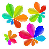 Colorful Chestnut Leaves Set — Stock Vector