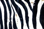 Abstract Grunge Zebra Style Background — Stock Photo